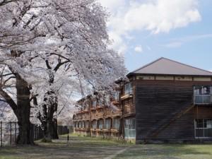 2014-04-05 製糸場3