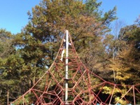 森林公園2004-11-15-19