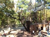 森林公園2004-11-15-1